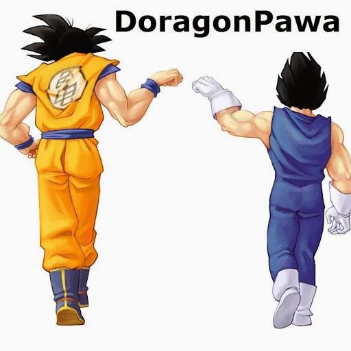 DoragonPawa