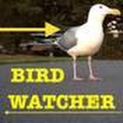 Birdwatchernw