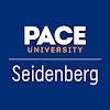 Pace Seidenberg
