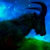 goat onastik