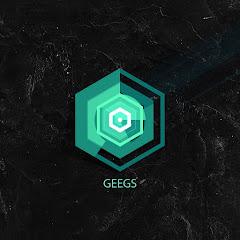 Gamin GeeGS