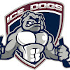 Sydney Ice Dogs Official