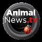AnimalNewsTV
