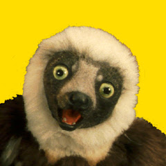 Zoboomafoo Episodes