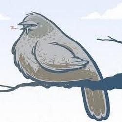 OrnitologJurus
