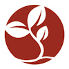 SEED - Promoting entrepreneurship for sustainable development