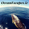 Ocean Escapes