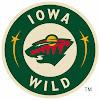 Iowa Wild Professional Hockey team