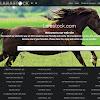 Larastock.com