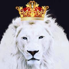 Cover Profil O Melhor Do Reggae De Imperatriz-Ma