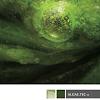 AlgaeTec biofuels