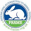 Info_at Frame