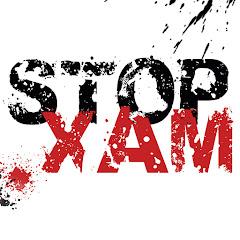 Рейтинг youtube(ютюб) канала StopXam