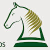Association of Irish Riding Clubs