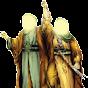 Muhammad A. A. Awan