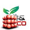 Raspberry & Co