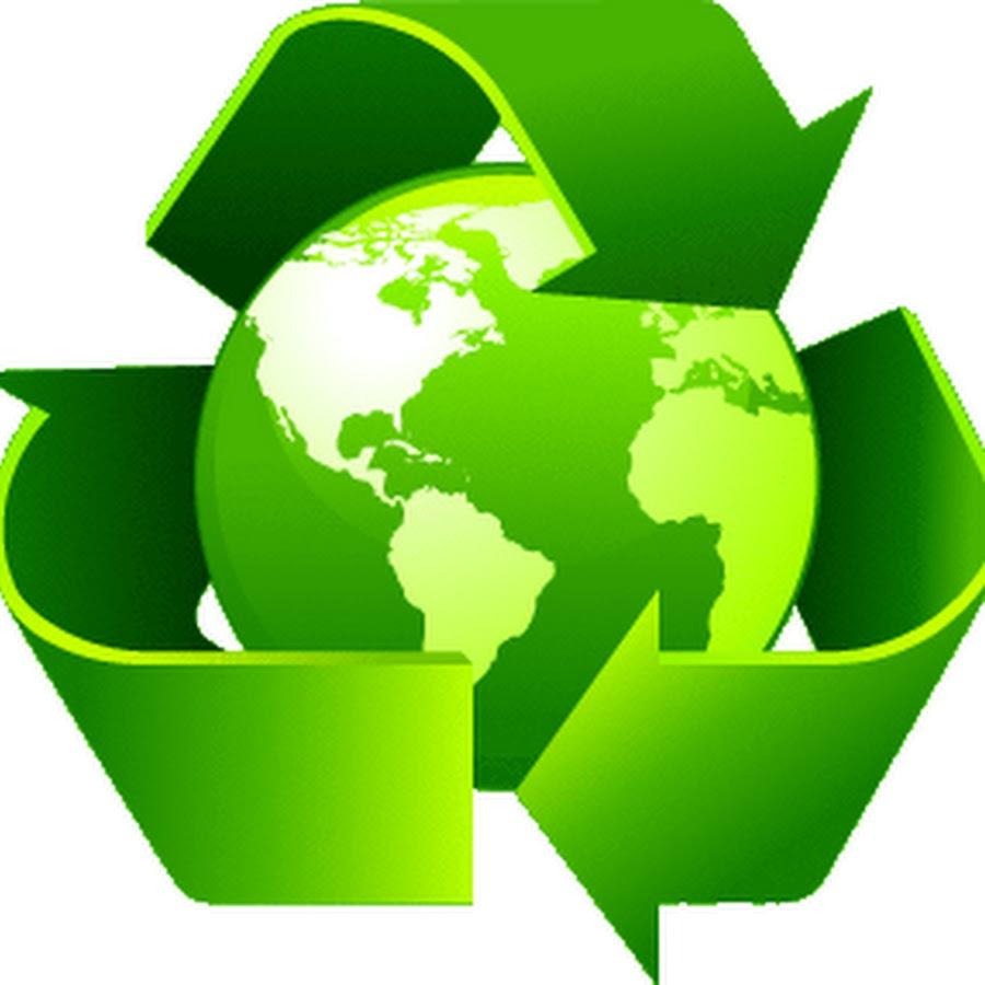 essay on eco friendly environment makes survival happy