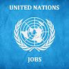 UN jobs in Egypt