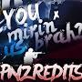 panzeR edits