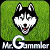 MrGammler