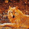 Orangewolf