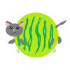 The Cat Melon