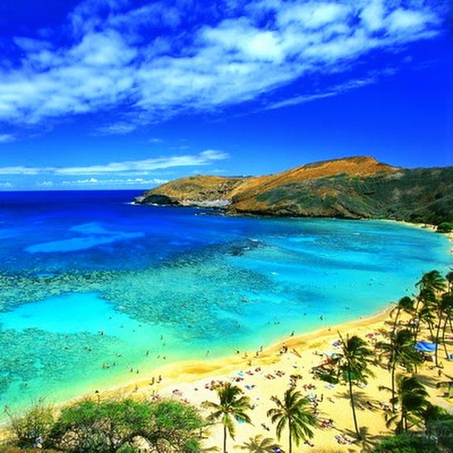 hawaiianislandreggae youtube