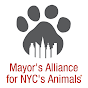 MayorsAlliance NYC