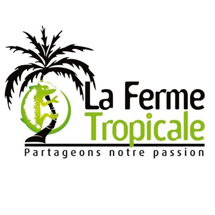 la ferme tropicale youtube. Black Bedroom Furniture Sets. Home Design Ideas