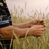 FAIR Farmers