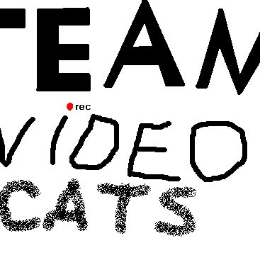 TeamVideoCats