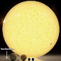Nolly Noid TV (nolly-noid-tv)