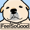 FeelSoGood's Global Animal Friends