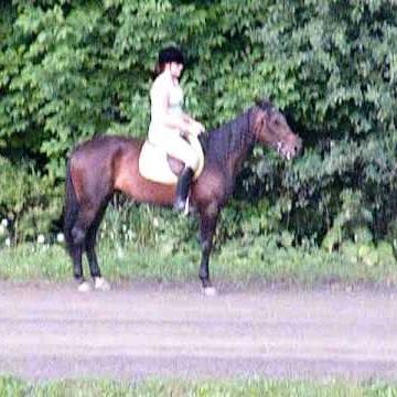 horseluvr06