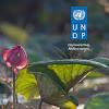 UNDP LaoPDR