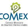 Consejo Mexicano de Asuntos Internacionales