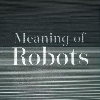 meaningofrobots