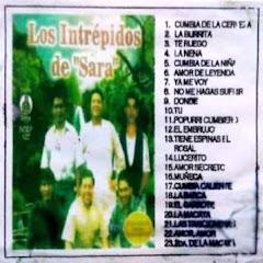 Cover Profil Intrepidos del Sahara - Topic