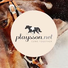 Team Playsson