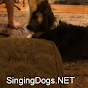 SingingDogs