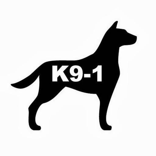Dog Training By K9-1 video