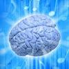 BrainTraining4All
