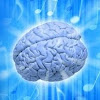 BrainTraining4All