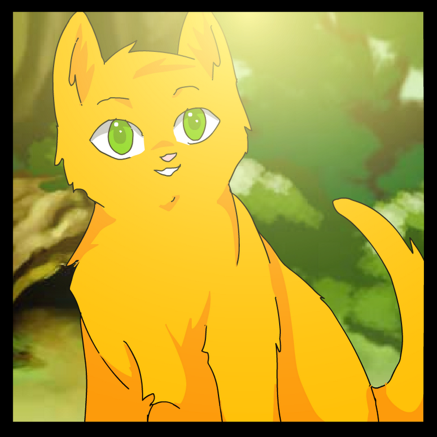 Warriors Cats Into The Wild Movie: SSS Warrior Cats