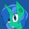 Pony 411