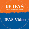 IFAS Video