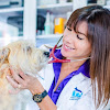 Animal Health & Rehab Center