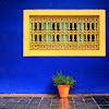 Marocchino L