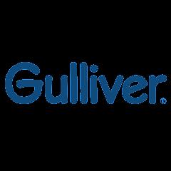 Рейтинг youtube(ютюб) канала Игрушки Gulliver