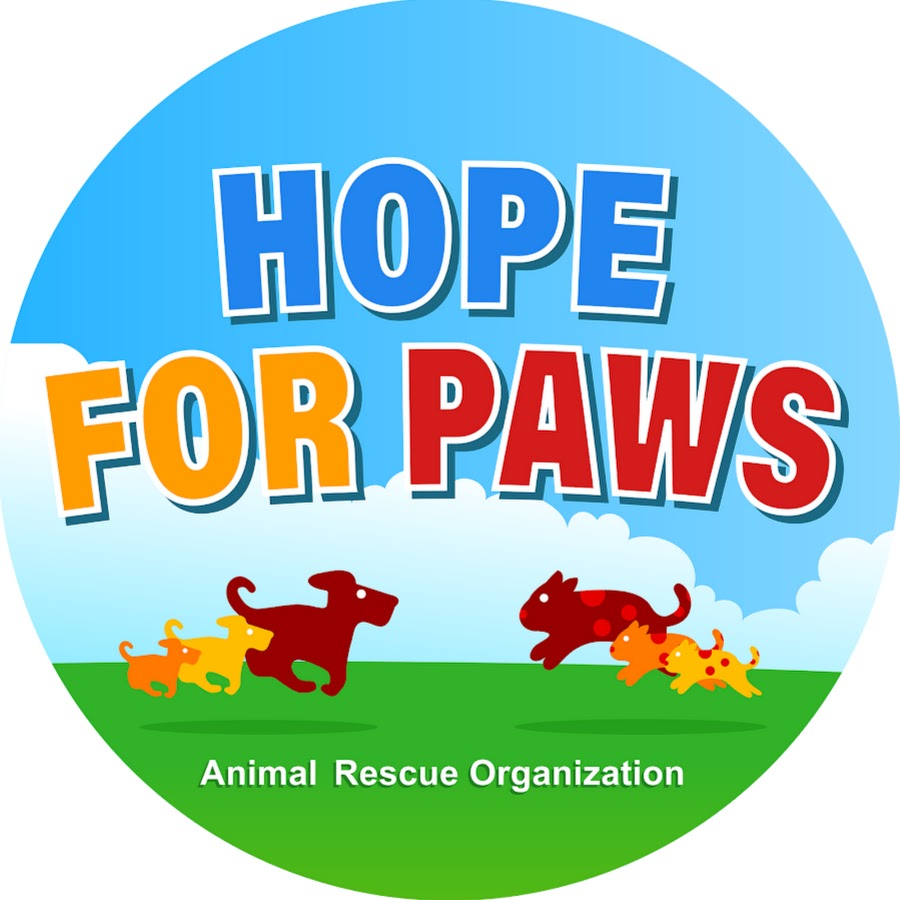 hope for paws official rescue channel youtube